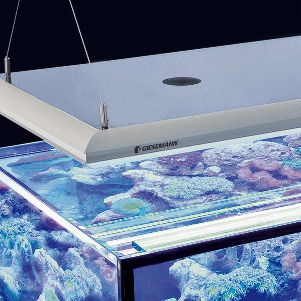 aquarium licht lichtsysteme beleuchtung f r aquarien. Black Bedroom Furniture Sets. Home Design Ideas